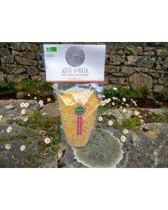 Polenta de maïs rouge basque  (variété ancienne) sans gluten